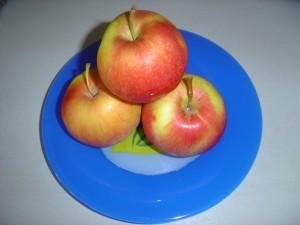česká podzimní jablka