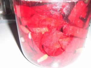 červená řepa naložená na kvas