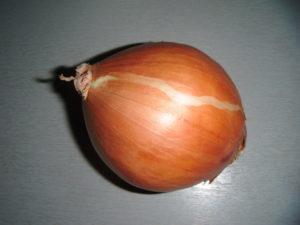 žlutá cibule