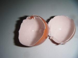 Rozpůlená vaječná skořápka